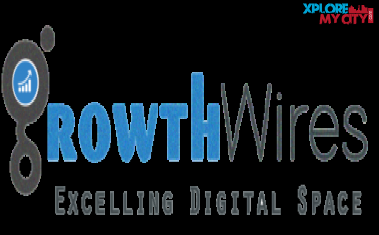 Growth Wires | SEO Agency in Noida and Delhi NCR